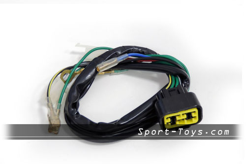 ZS IGNITION WIRING CABLAGES